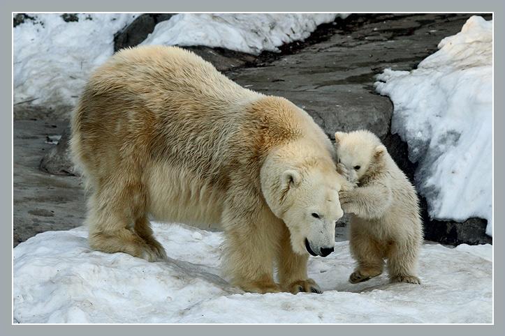 Telling mom a secret